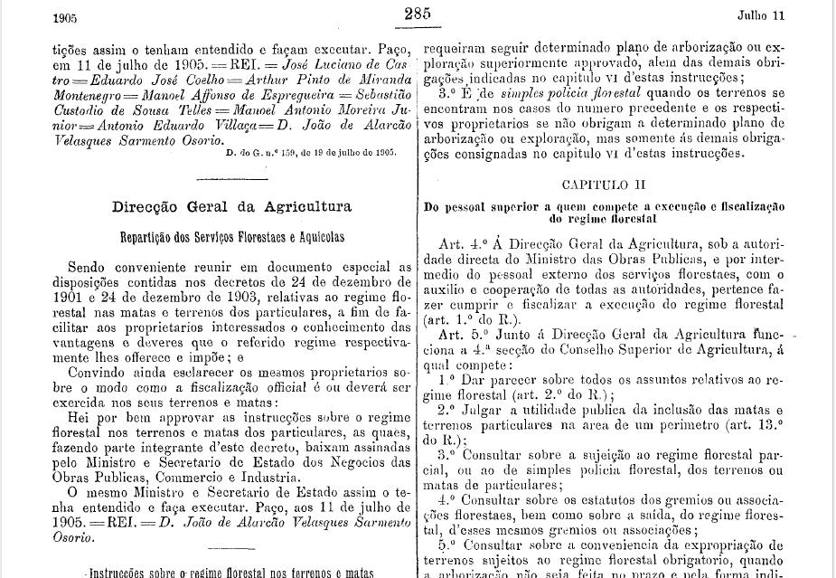 Decreto 1905